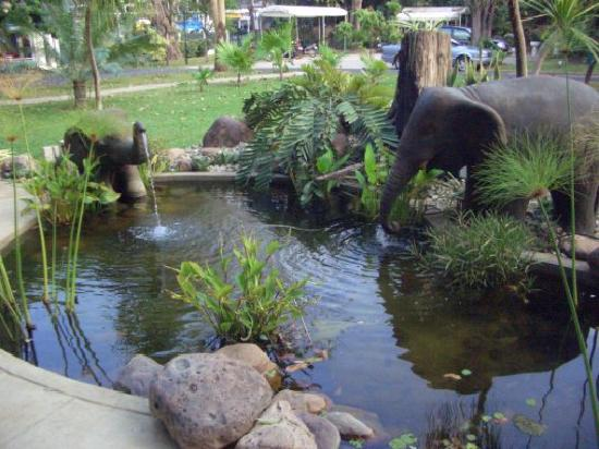 Eco Resort Chiang Mai: Love the elephants