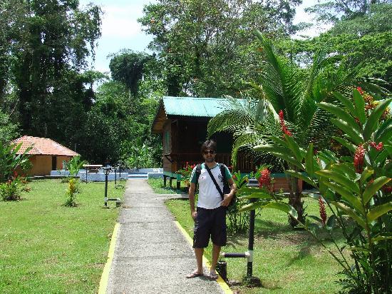Hotel El Pizote Lodge: El pizote lodge view