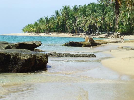 Hotel El Pizote Lodge: Punta Uva beaches