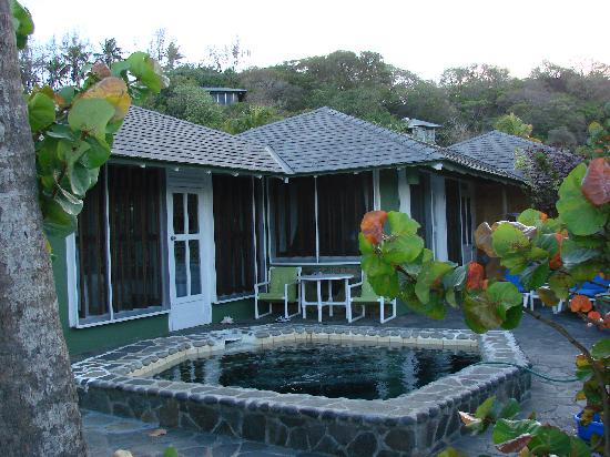 Young Island Resort: Cottage 6, plunge pool and patio