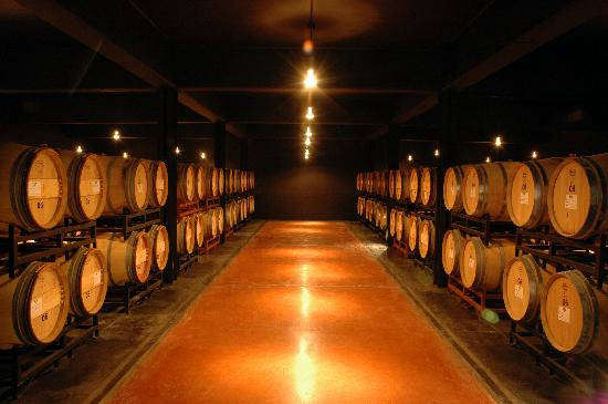 Pulenta Estate Winery: oak cellar