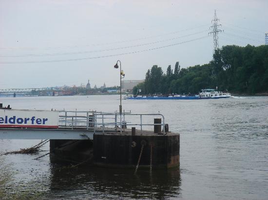 Am Schloss Biebrich: Lovely location next to the Rhine