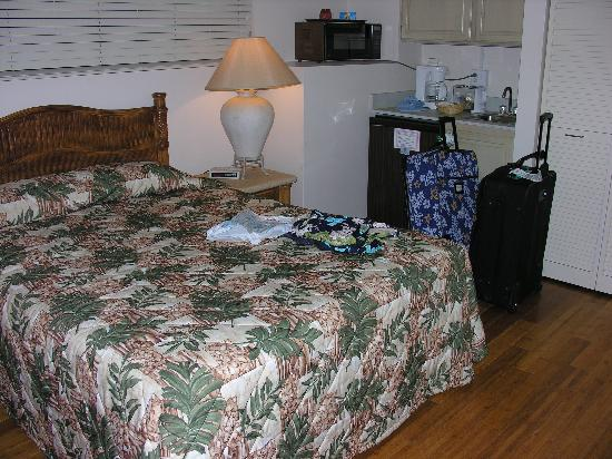 Kahana Falls: The B side (hotel room sized bedroom)