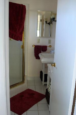 Point Reyes Country Inn & Stables: Room #4 - Private bathroom with shower stalls