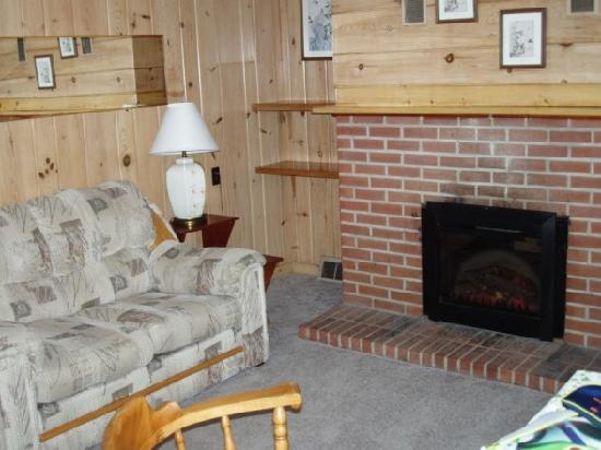 Lake N Pines Motel: rustic living room with electric fireplace