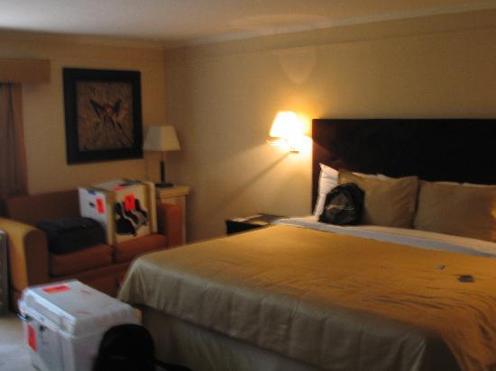 Plaza Inn Hotel : Otra vista de la Jr Suite