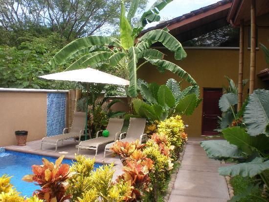 Tamarindo Blue Apartments : grounds