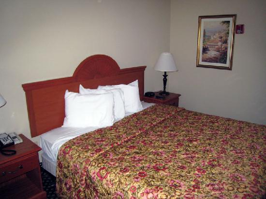 Holiday Inn Express Windsor - Sonoma County : Bed