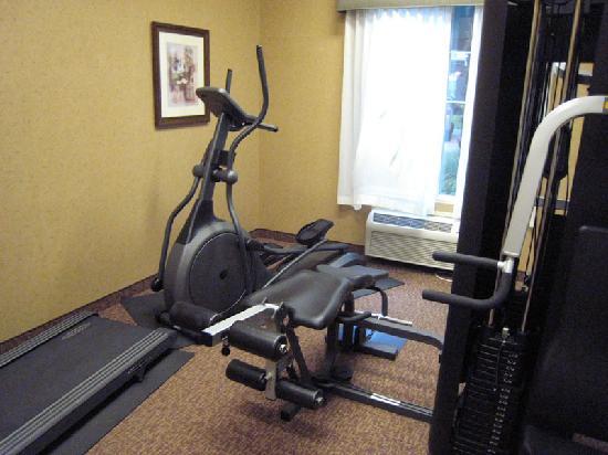 هوليداي إن إكسبريس - ويندسور سونوما: Gym