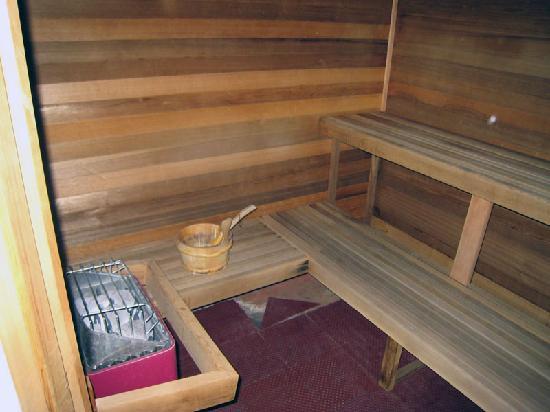هوليداي إن إكسبريس - ويندسور سونوما: Sauna