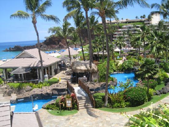 swimming pool and beach picture of sheraton maui resort spa lahaina tripadvisor