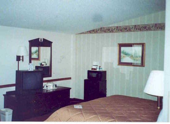 BEST WESTERN Center Pointe Inn: Another view- these are not spots on the wall - they are shadows!