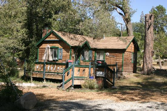 Blue jay cabin picture of arrowhead pine rose cabins for Cabins in lake arrowhead ca