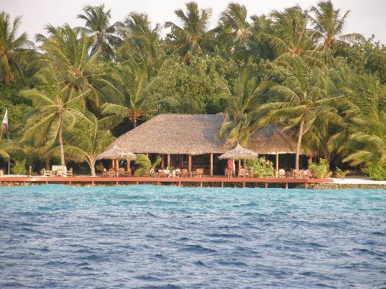 Дхиггири: Island