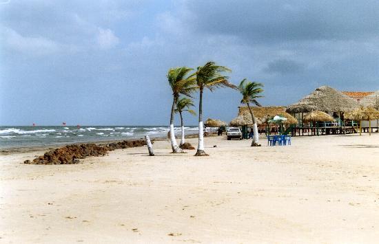 State of Para: Praia do Pesquiero
