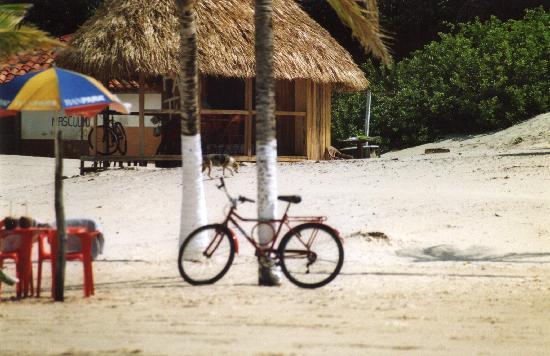State of Para: Praia di Pesqueiro