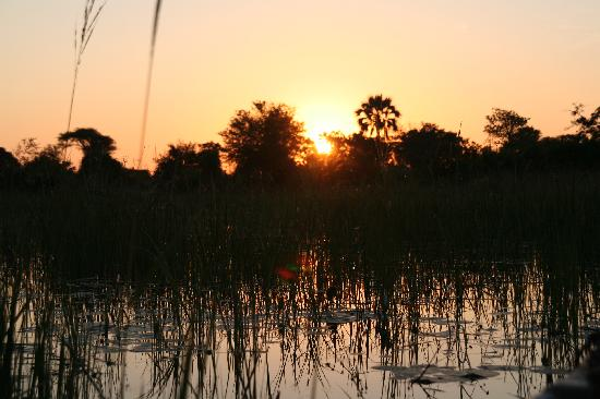‪‪Okavango Delta‬, بوتسوانا: sunset in okavango‬