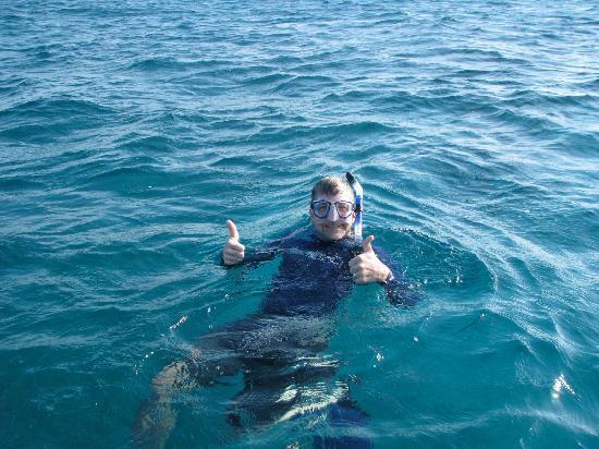 Thatch Caye Resort: Snorkeling