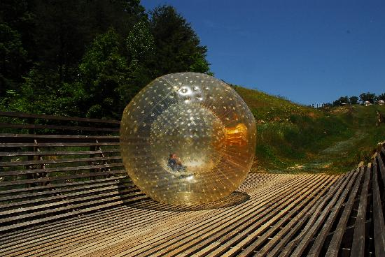 Zorb Smoky Mountains : Rolling down the Hill