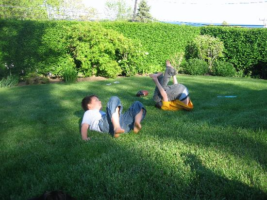 Hither House Cottages: Rolling in the yard.