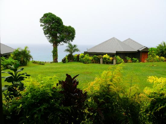 Taveuni Island Resort & Spa: View from our bure