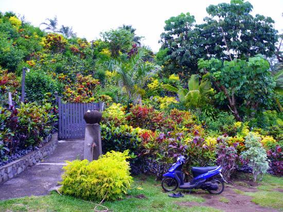 Taveuni Island Resort & Spa: The way to the beach