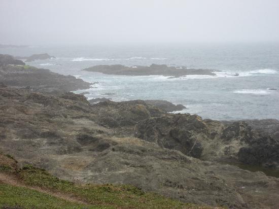 Point Cabrillo Light Station: ocean