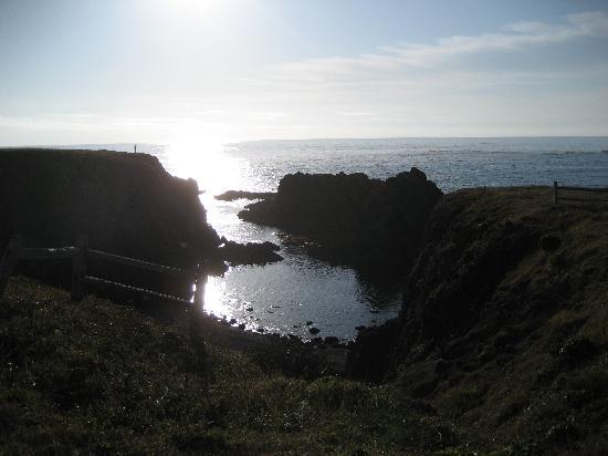 Point Cabrillo Light Station: Cove