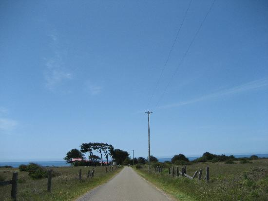 Point Cabrillo Light Station: Guests drive this driveway, people walk the same road. great view.