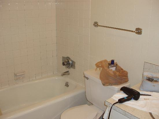 Alpen Acres Motel: BATHROOM 2
