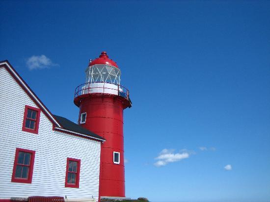 Irish Loop: ferryland lighthouse