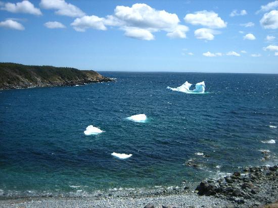 Irish Loop: Newfoundland icecubes