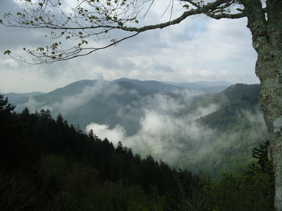 Great Smoky Mountains National Park, TN: Newfound Gap