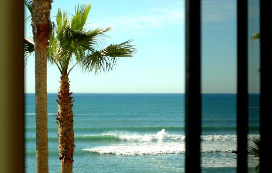 Club Marena Luxury Oceanfront Condos: Great Surf!