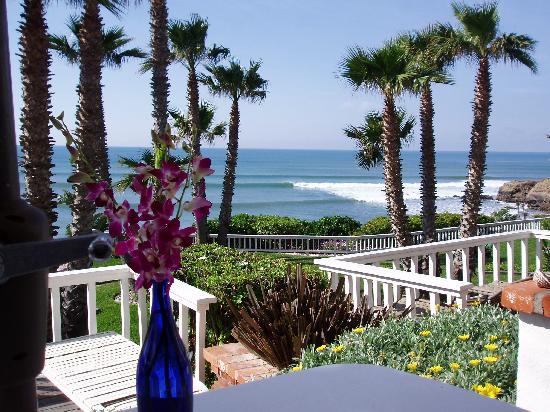 Club Marena Luxury Oceanfront Condos: The VIlla Patio
