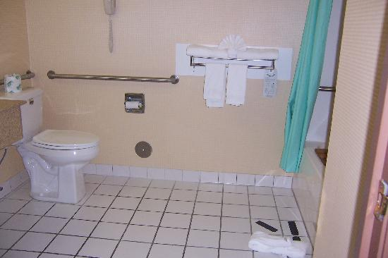 Comfort Inn & Suites: toilet and towel rack