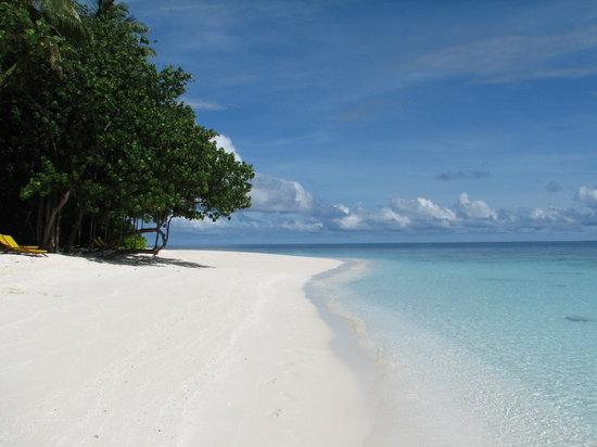 Ihuru Island: Beach