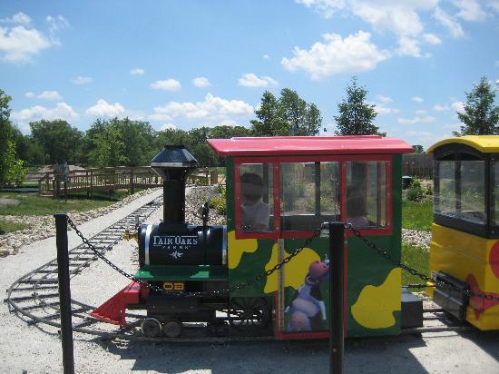 Fair Oaks Farms: Train ride for kids