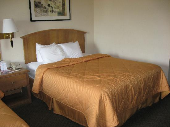 Comfort Inn & Suites at Dollywood Lane: One of the beds