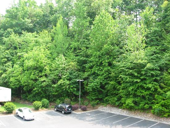 Comfort Inn & Suites at Dollywood Lane: View from balcony