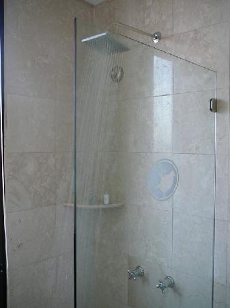 Charleston Cartagena Hotel Santa Teresa : Hotel room's shower, room 418