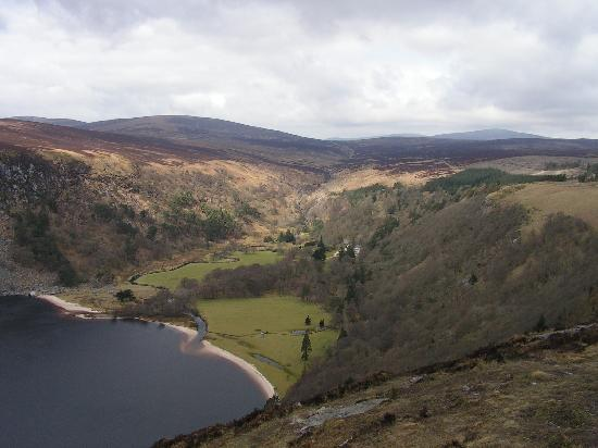 Glendalough Village, Irland: Wild nature
