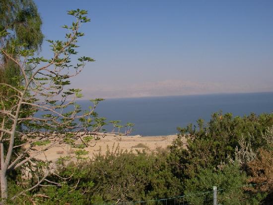 Kibbutz Ein Gedi : View from the pool; Dead Sea and Jordan mountains