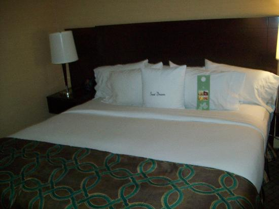 Doubletree Hotel Atlanta/North Druid Hills: our bed  in the king room