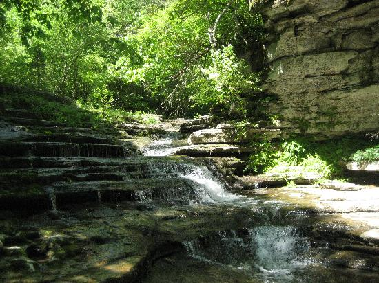 Lexington, KY: Small waterfalls