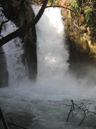 Qiryat Shemona, Ισραήλ: Banias Waterfall