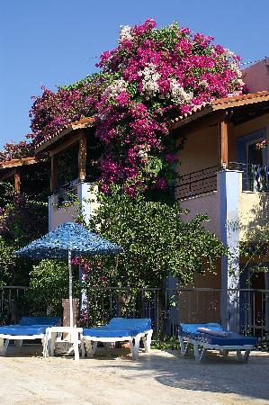 Summer Garden Apart Hotel: Hotel building from main pool