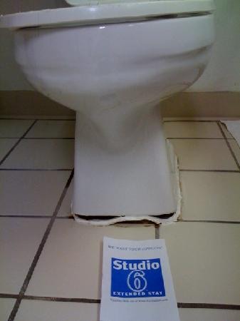 Studio 6 San Antonio - Six Flags : Toppling Toilet