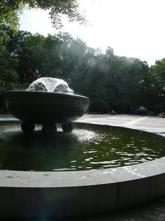 Theodore Roosevelt Island Park: Fountain