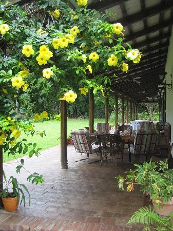 Estancia El Bordo de Las Lanzas: Verandah where we ate our meals
